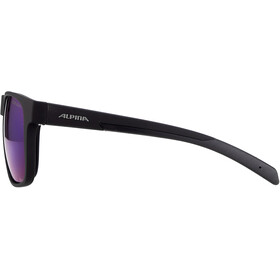 Alpina Nacan III HM Glasses, negro